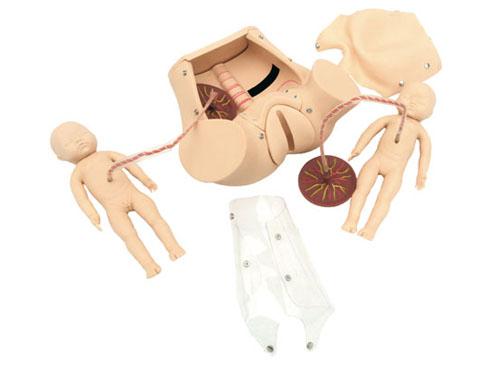 高级分娩综合技能训练模型