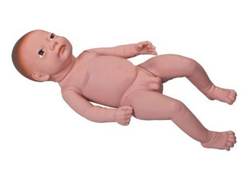 高级出生婴儿模型