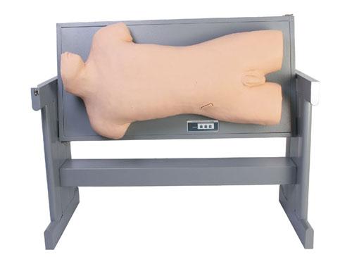 综合穿刺术与叩诊检查技能训练模型