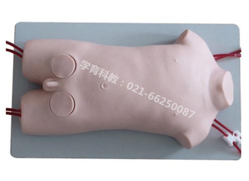 儿童股静脉与股动脉穿刺训练模型