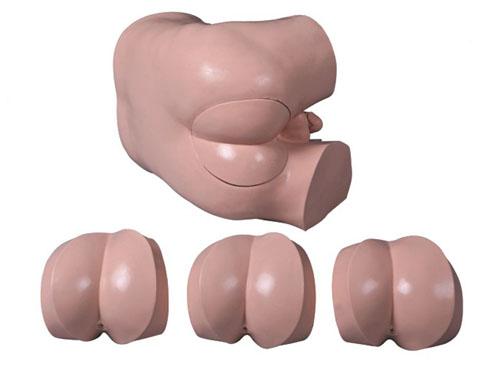 高级直肠指诊检查模型