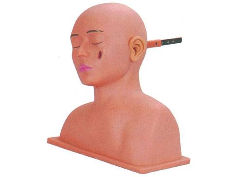 高级耳诊断模型