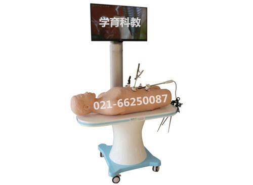 腹腔镜手术技能训练人体模型