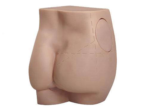 臀部肌肉注射模型