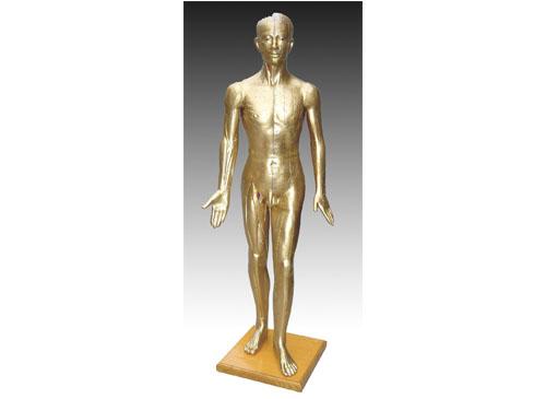针灸铜人模型
