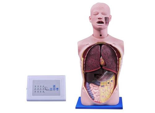 多功能透明洗胃训练模型