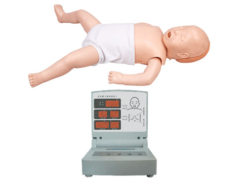 婴儿心肺复苏模型